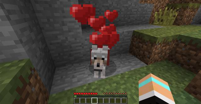 Tame Dogs in Minecraft