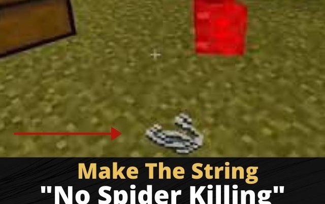 How To Get String In Minecraft Without Killing Spiders